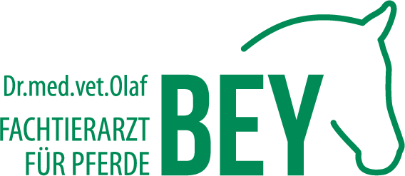 Tierarztpraxis für Pferde - Dr. Olaf Bey